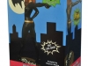 DST Catwoman Statue Package