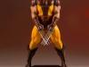 DST CG Wolverine 80