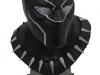 DST-Legends-in-3D-Black-Panther