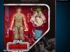 Hasbro-Black-Series-Luke-and-Yoda-Pkg