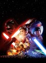Lego Star Wars The Force Awakens Poster