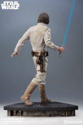 Premium Format Luke Skywalker Back