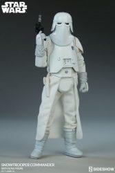 Snowtrooper Commander Full body
