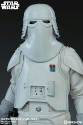Snowtrooper Commander Closeup Helmet