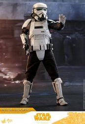 Patrol Trooper Halt