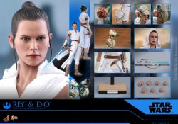 Hot Toys The Rise Of Skywalker Rey D-O Accessories
