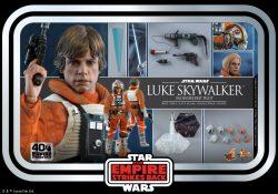 Hot Toys Luke Skywakler Snowspeeder Pilot Accessories