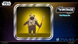 Hasbro WM TVC Paploo Portrait