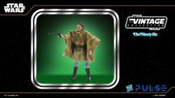 Hasbro WM TVC Princess Leia Endor Portrait