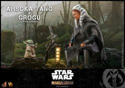 Hot Toys TM Ahsoka Tano Grogu