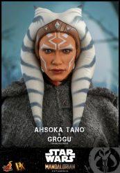 Hot Toys TM Ahsoka Tano Grogu Portrait